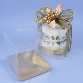 4 Inch Acetate Box With  Base